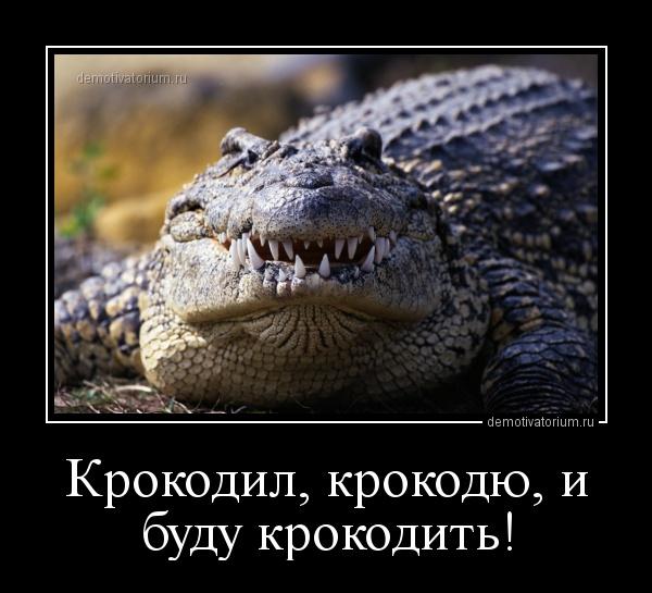 крокодю и буду крокодить!
