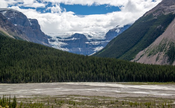 IcefieldParkway Post-56