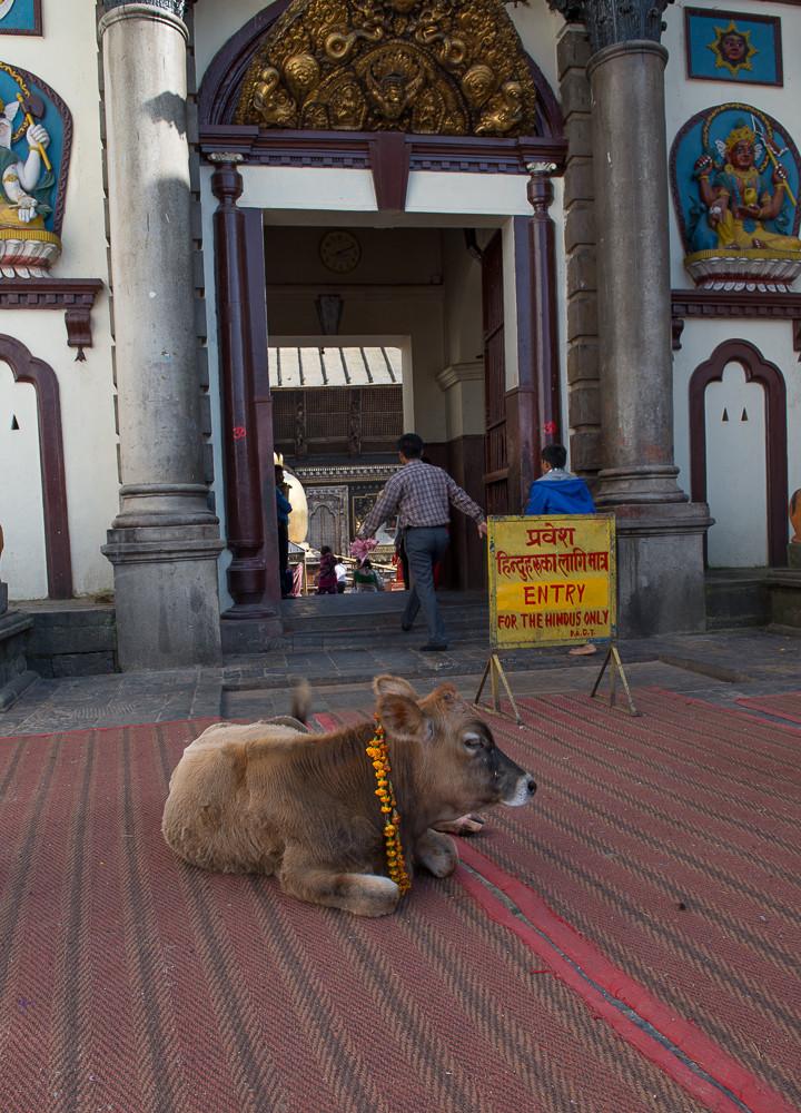 Nepal Kathmandu Pashupatanati POST-4