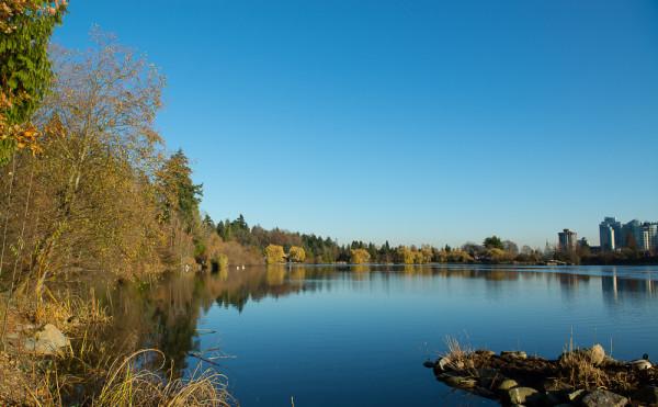 Lost Lagoon 27.11.15-9