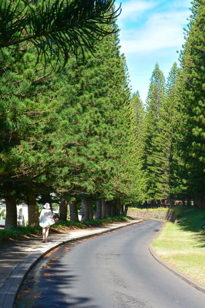 Maui 09.04.16  Post-6