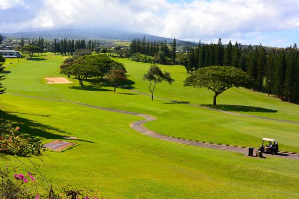 Maui 09.04.16  Post-7