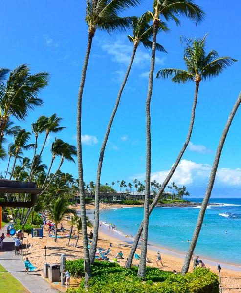 Maui 09.04.16  Post-8