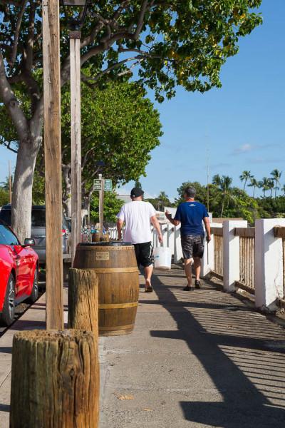 Maui 10.04.16  Post-3