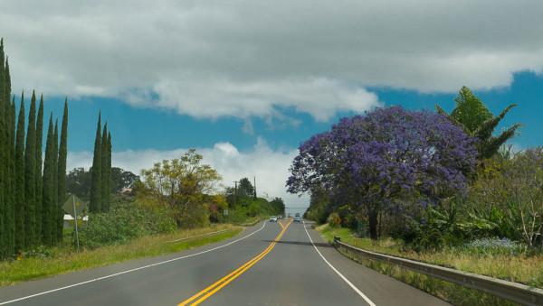 Maui 14.04.16  Post-6