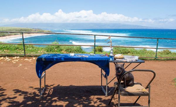 Maui 16.04.16  Post-9