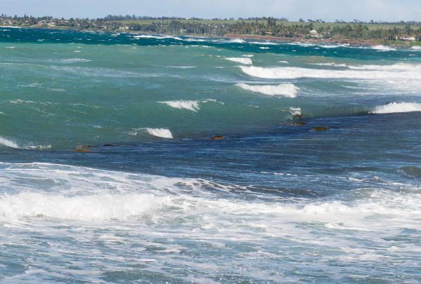 Maui 20.04.16  Post-19