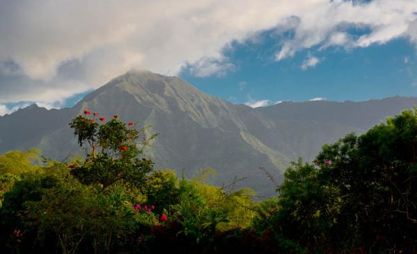 Kauai 01.05.16  Post-3