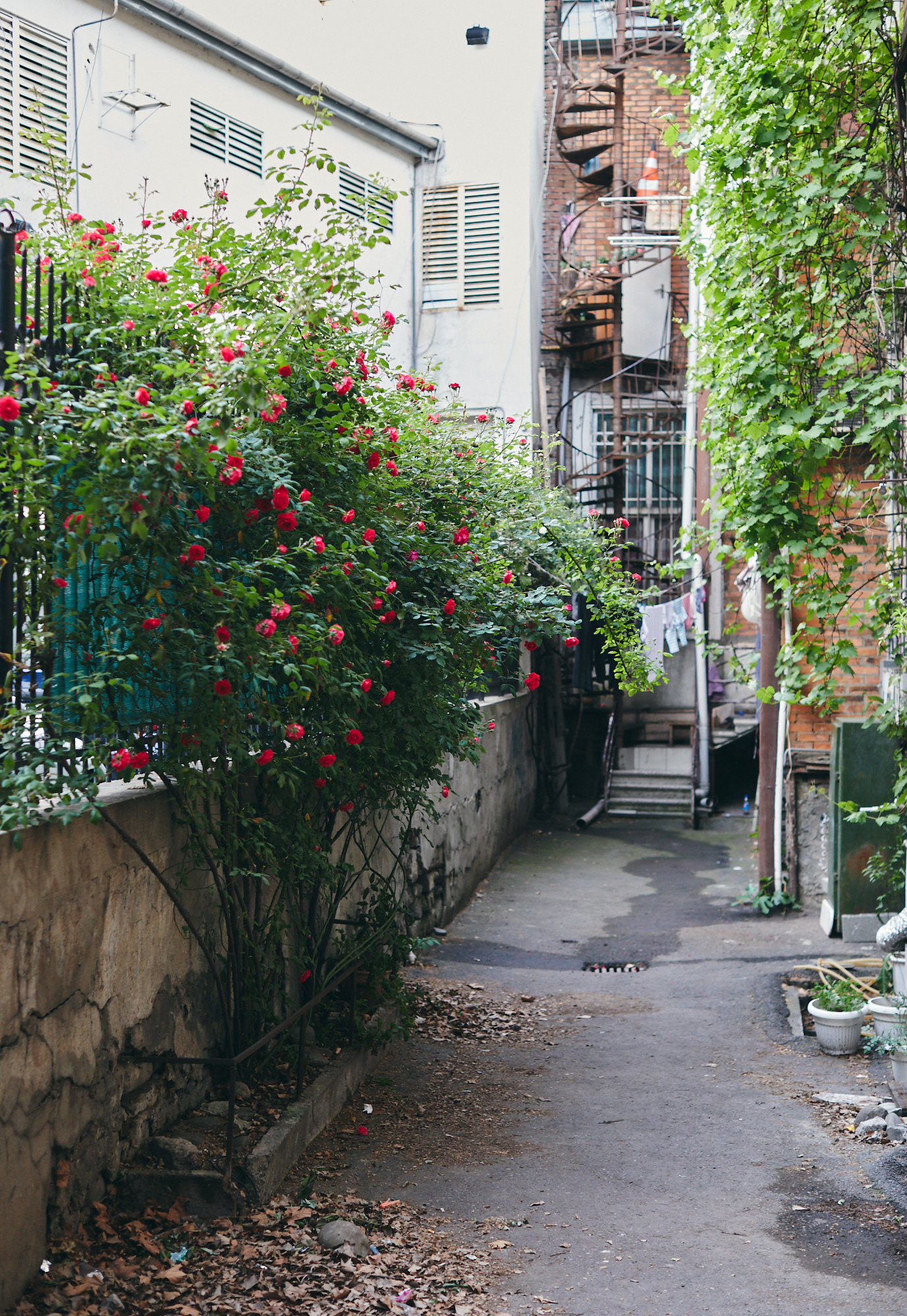 Дворик, винтовая лестница, Тбилиси