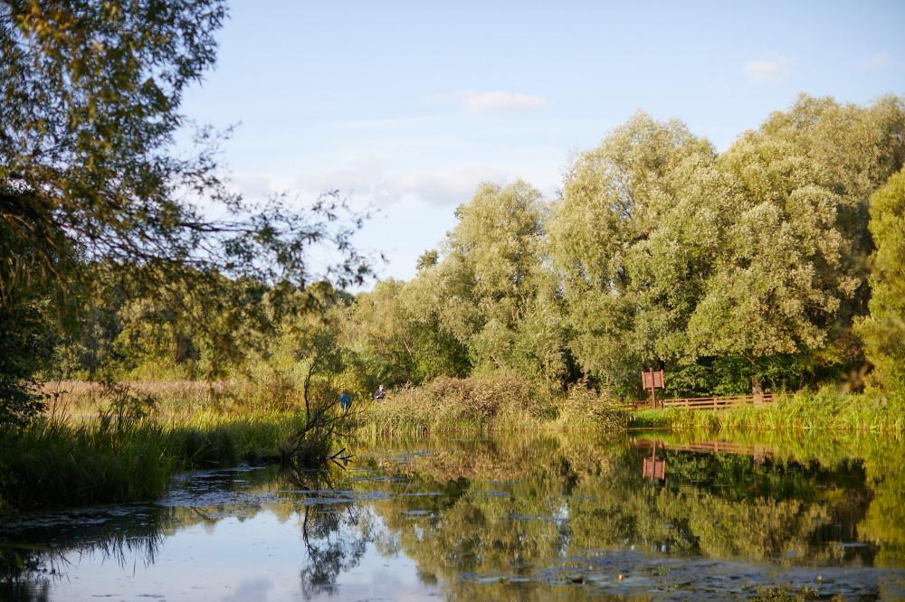 Озеро Бездонное Серебряный бор