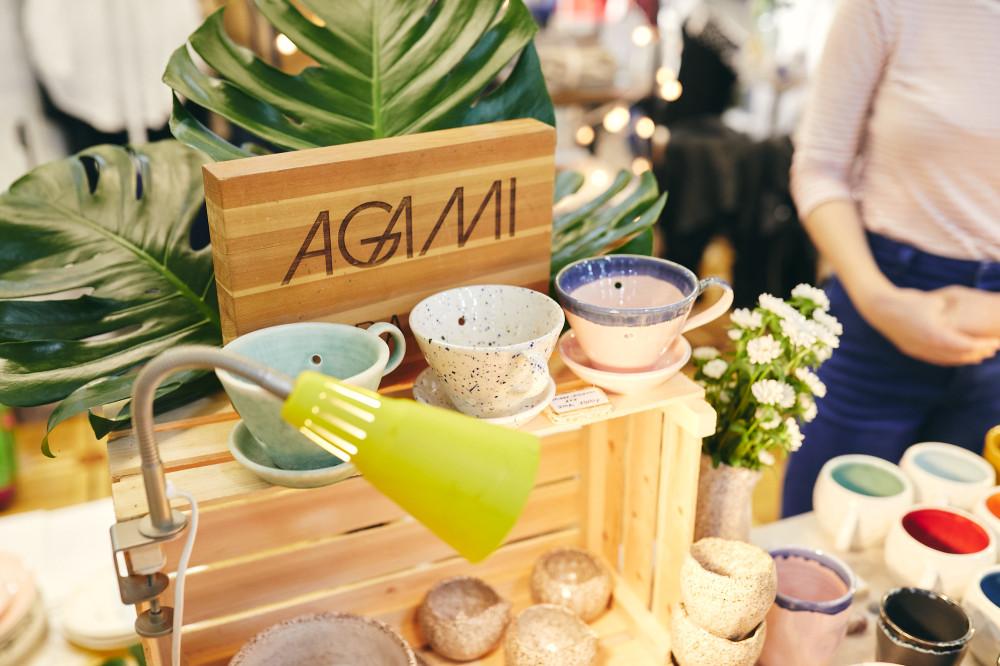 Проект Agami