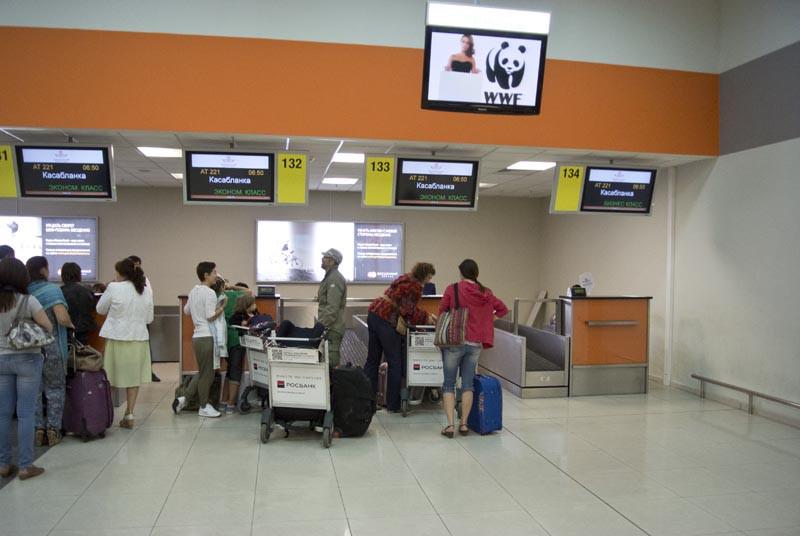 бизнес стойка регистрации на рейс