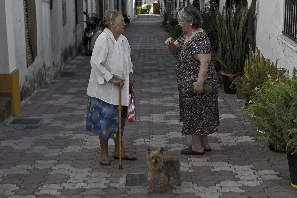 бабушки с собачкой