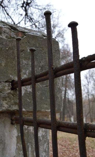 Ограда парка (1)