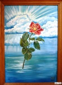 роза  мира2