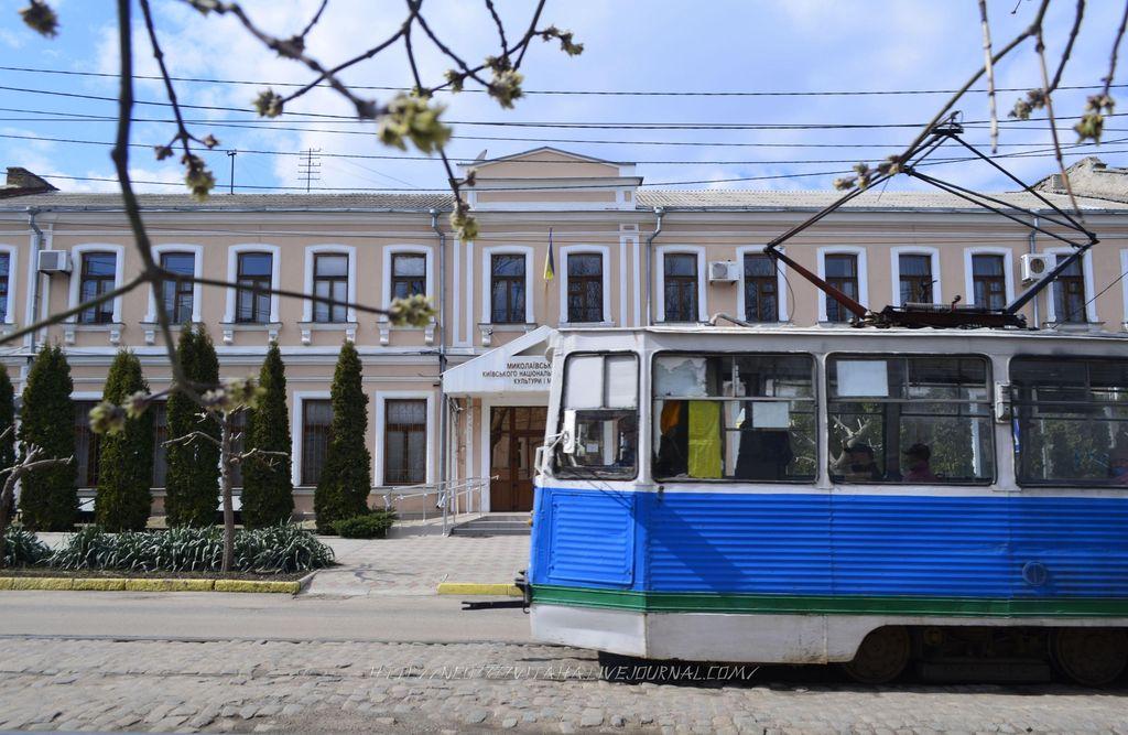 1. Миколаїв (55)