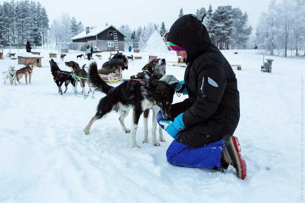 2016-Lapland-000043-Edit.jpg