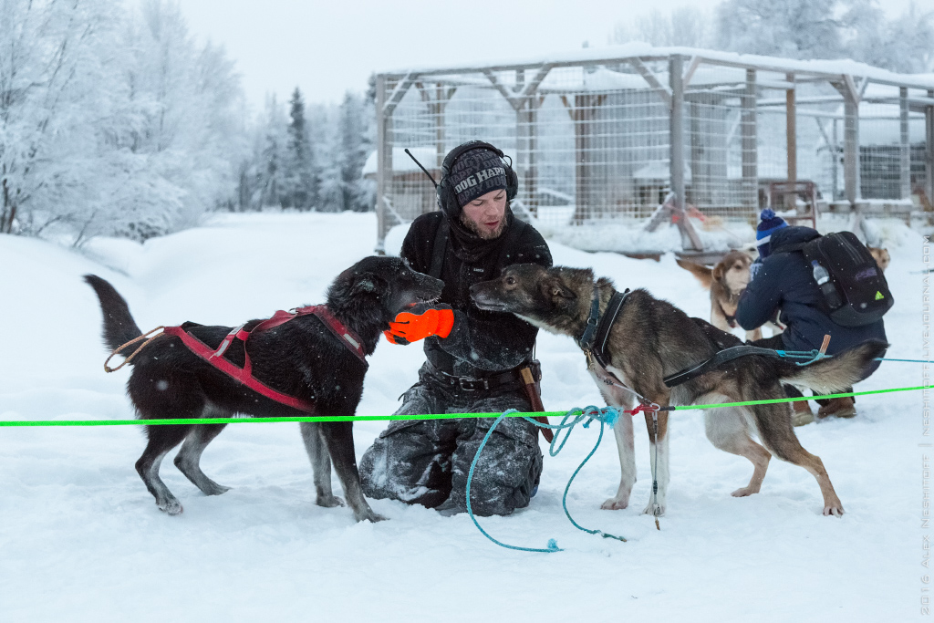 2016-Lapland-000056-Edit.jpg