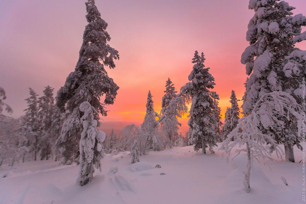 2016-Lapland-002214-Edit.jpg