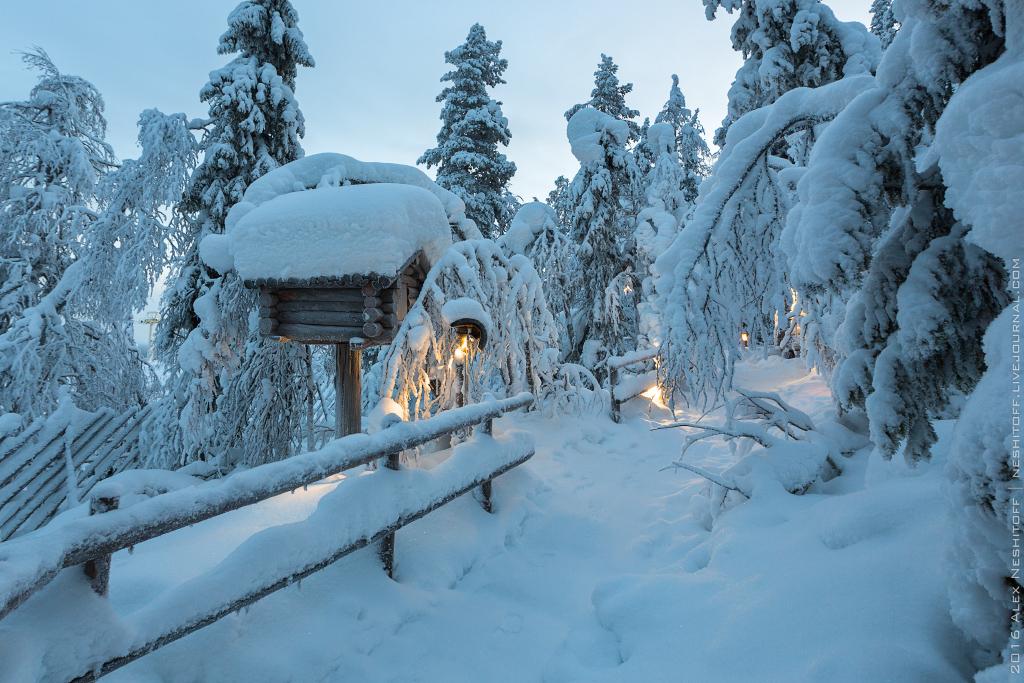 2016-Lapland-002433-Edit-2.jpg
