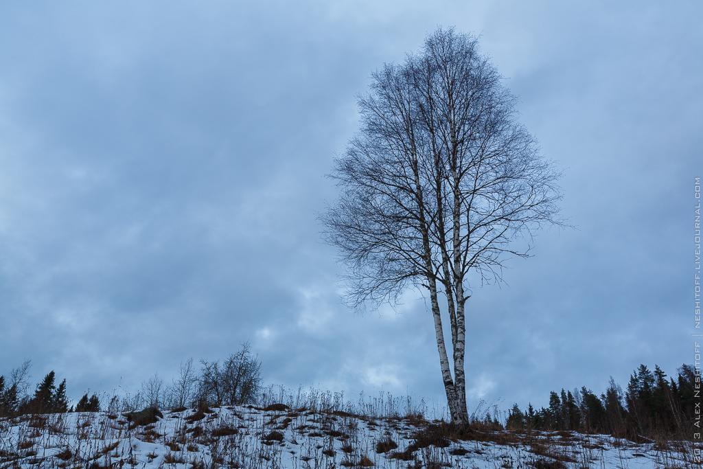 2013-Russia-Karelia-Ladoga Ring Day2-024