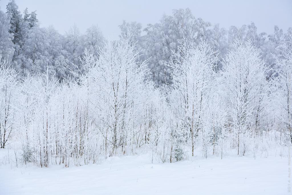 2014-Russia-Karelia-Edge of the Earth-Kyvach-005