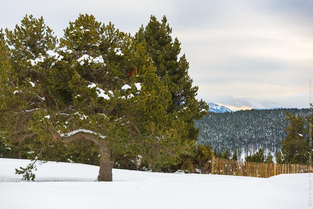 2014-Andorra-Naturlandia-003-2