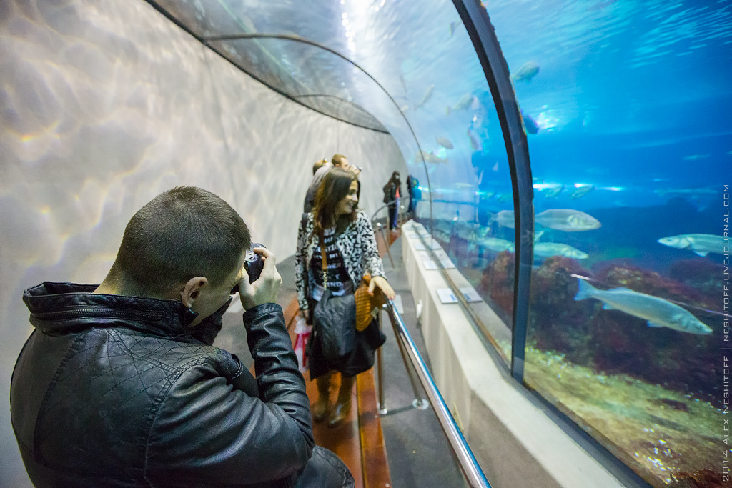 2014-Spain-Barcelona-Aquarium-018