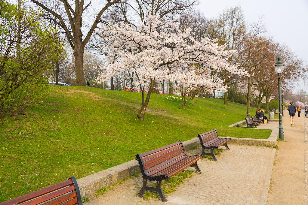 2014-Germany-Hamburg-Spring-003