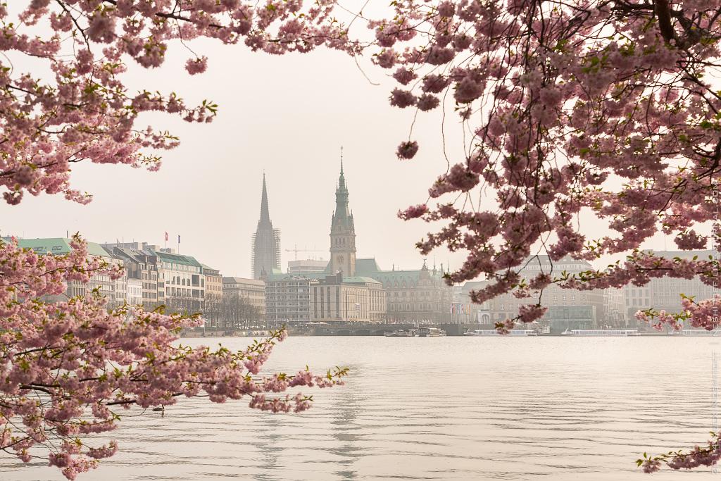 2014-Germany-Hamburg-Spring-012