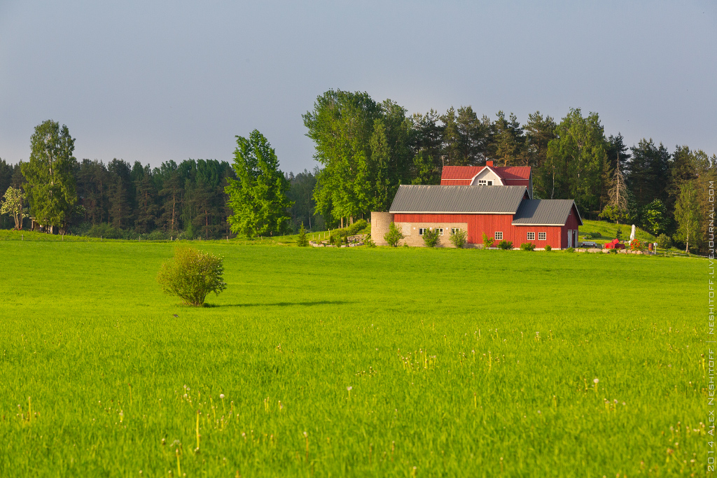 2014-Finland-Field of South-Summer-009