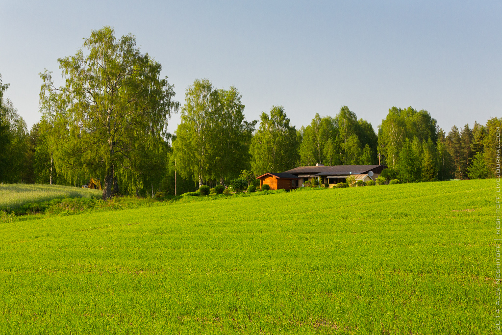 2014-Finland-Field of South-Summer-011