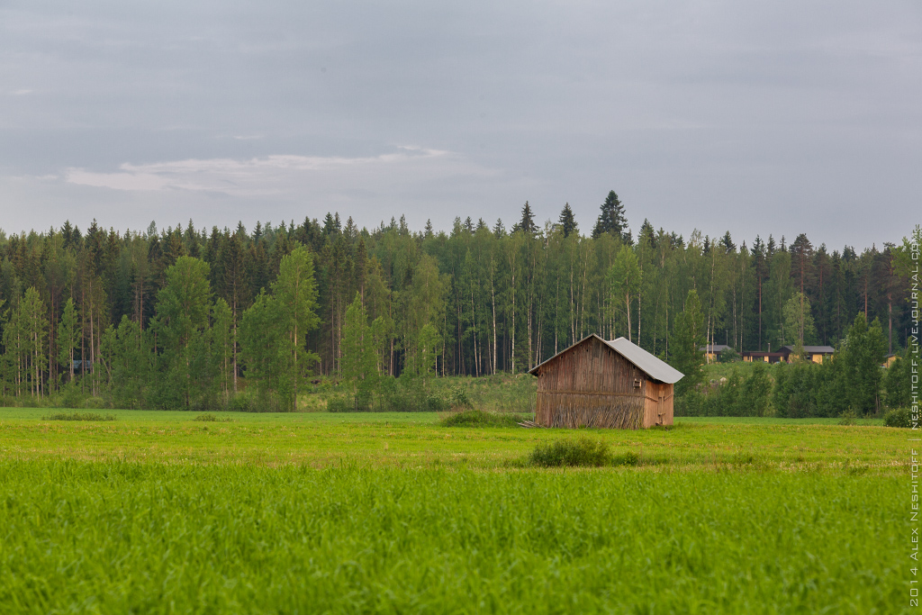 2014-Finland-Field of South-Summer-002