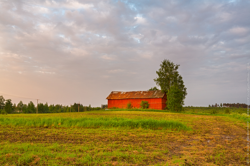 2014-Finland-Field of South-Summer-001