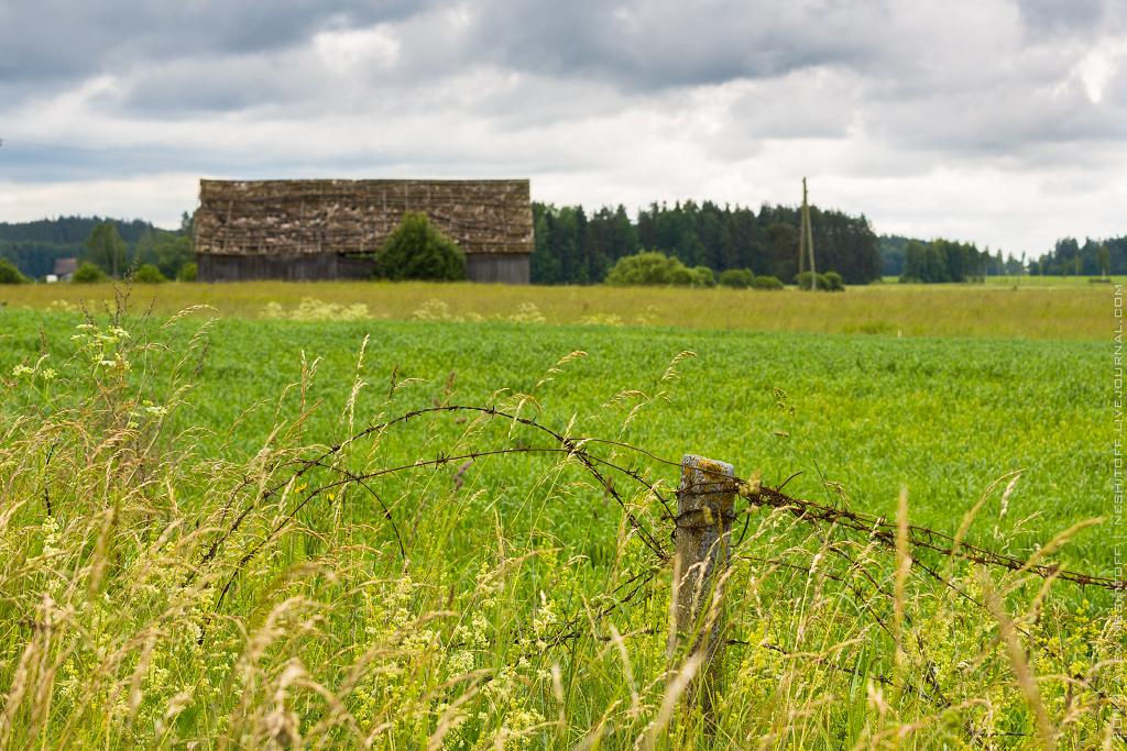 2014-Latvia-Pastoral-013