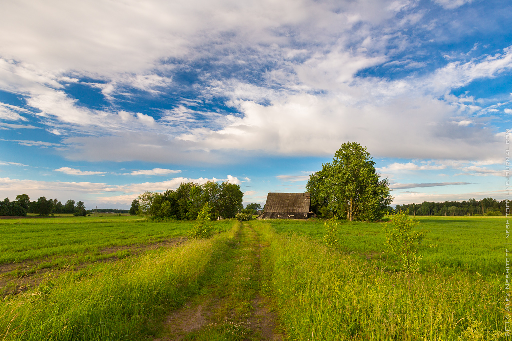 2014-Latvia-Pastoral-003
