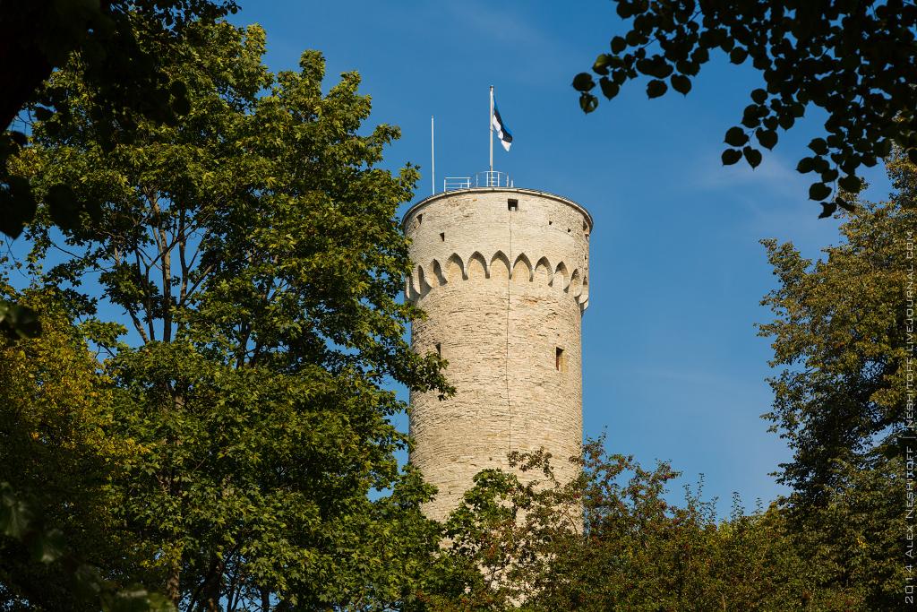 2014-Estonia-St.Peter Line-Blog tour-Day4-002