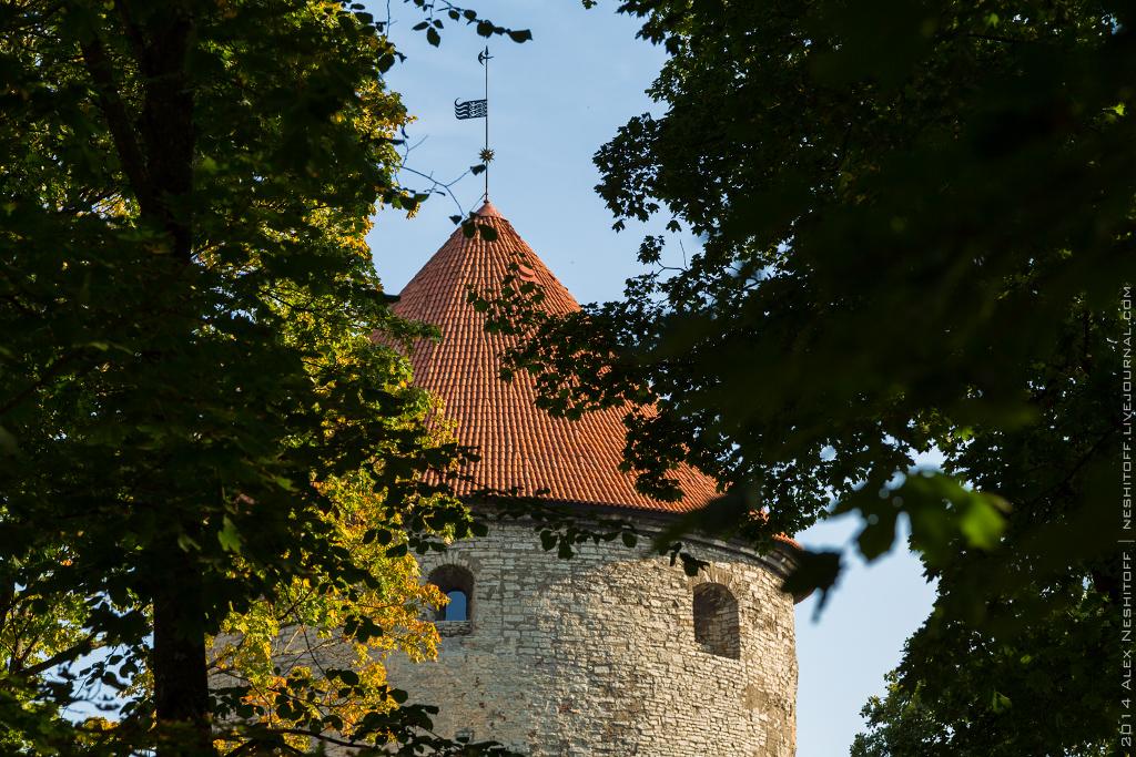 2014-Estonia-St.Peter Line-Blog tour-Day4-003