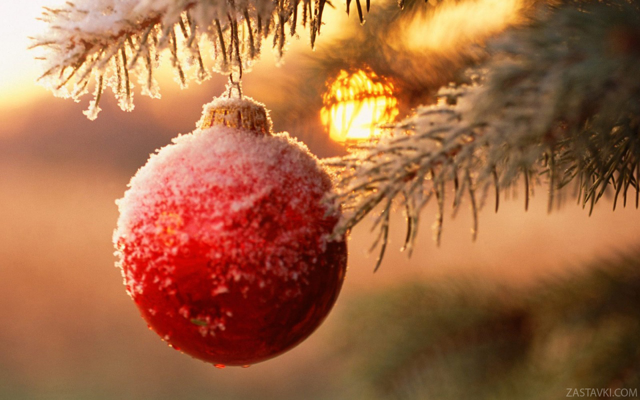 new_year_wallpapers_christmas_decorations_011576_205_0x0_mc