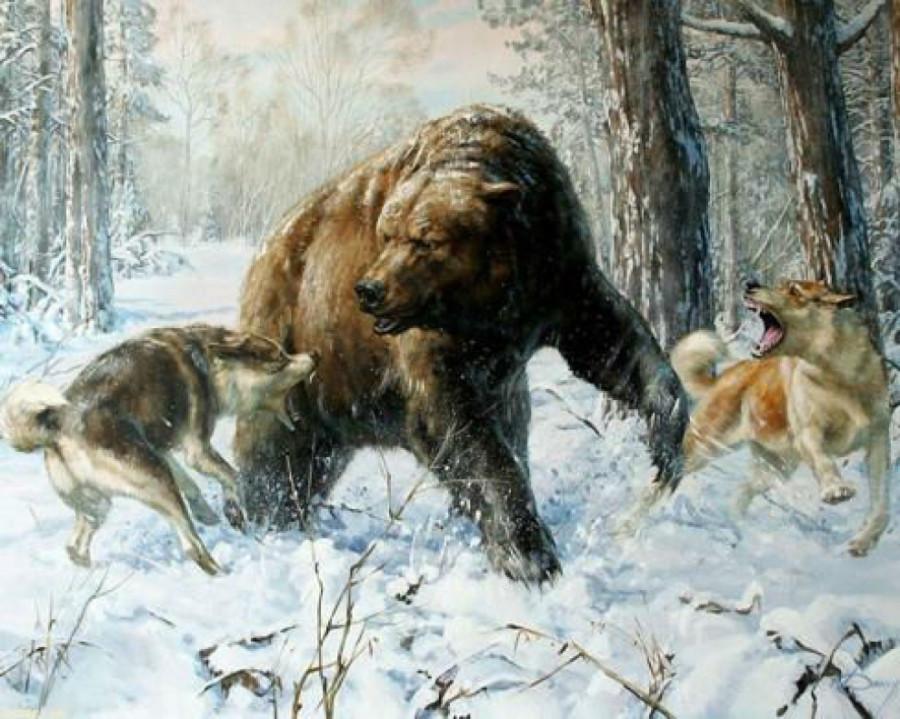 Тысячи лет травли, охоты, войны