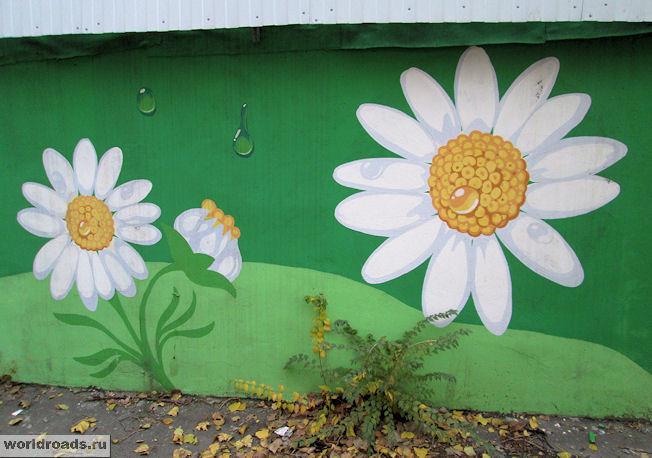Ромашки на стену