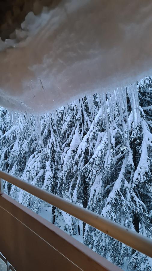 Но земное притяжение-страшная сила, и снежные навесы с сосульками, по-прежнему стремятся к земле.