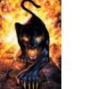 flaming panther