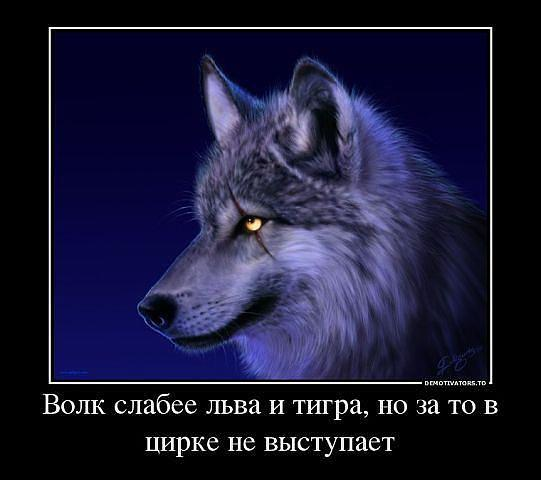 552935_120457598151285_1367546042_n