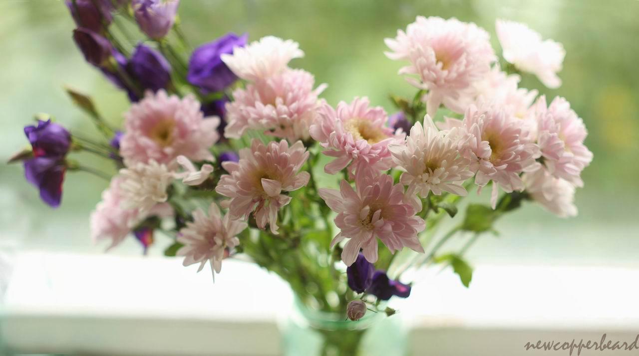 1_flowers_pan5