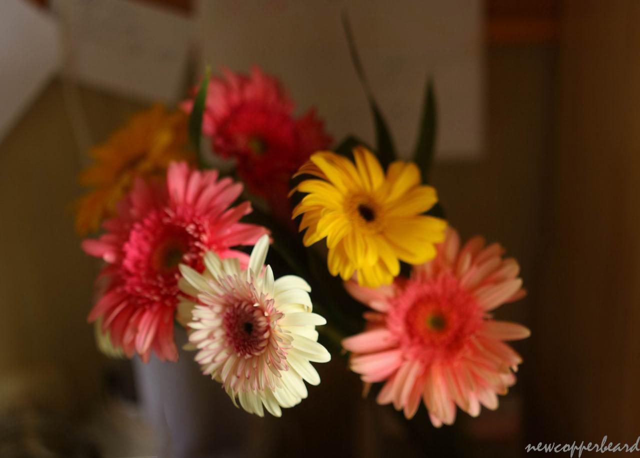 flowers_pan4