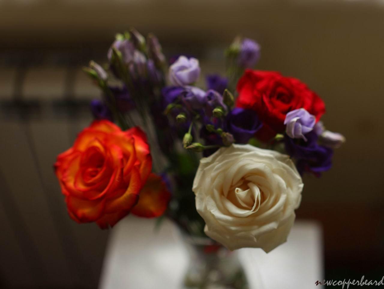 flowers_pan6