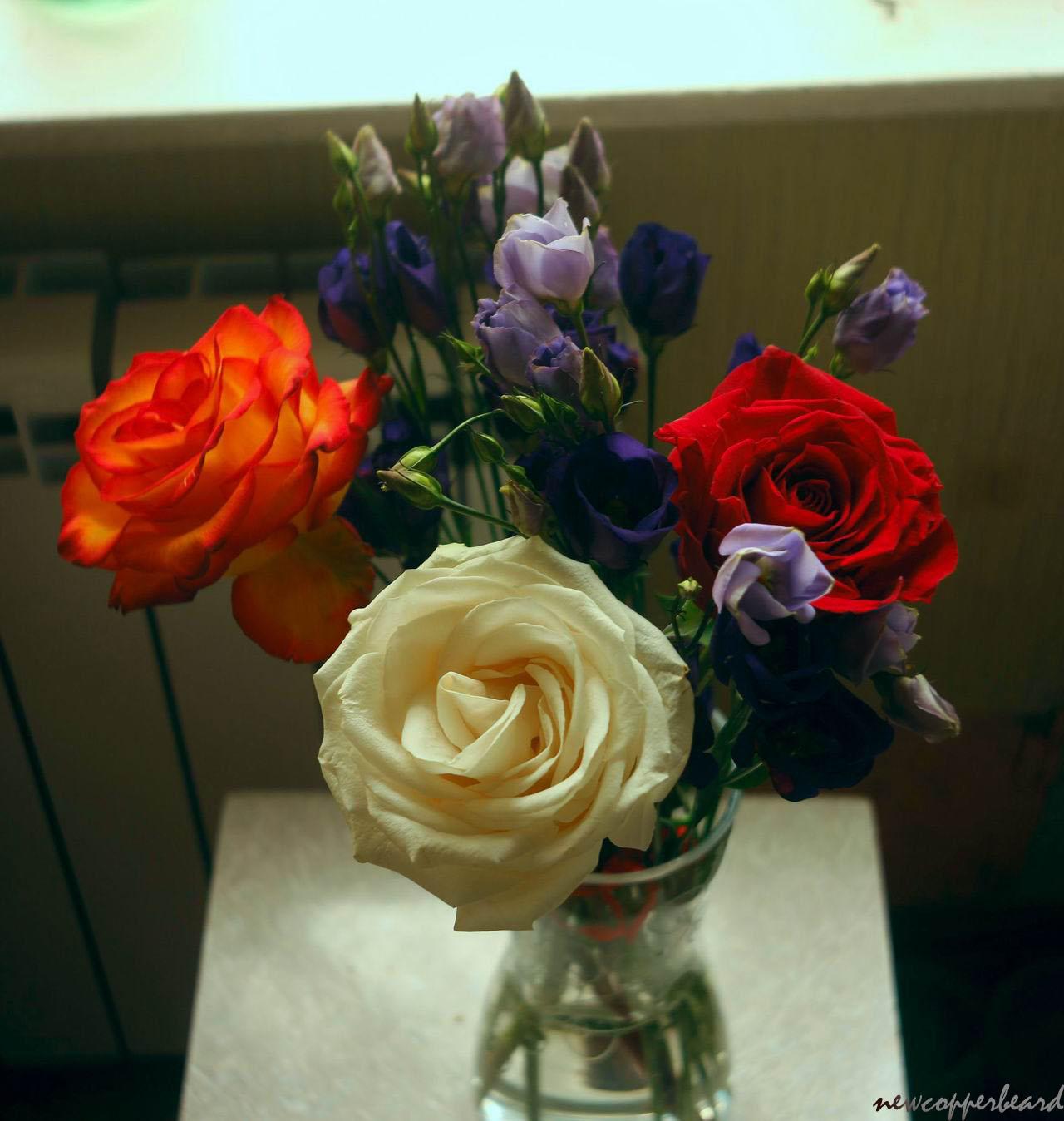 flowers_pan7