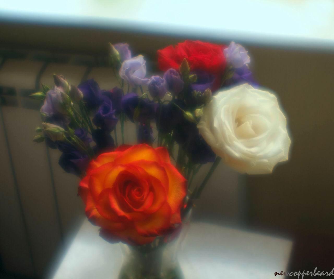 flowers_pan8