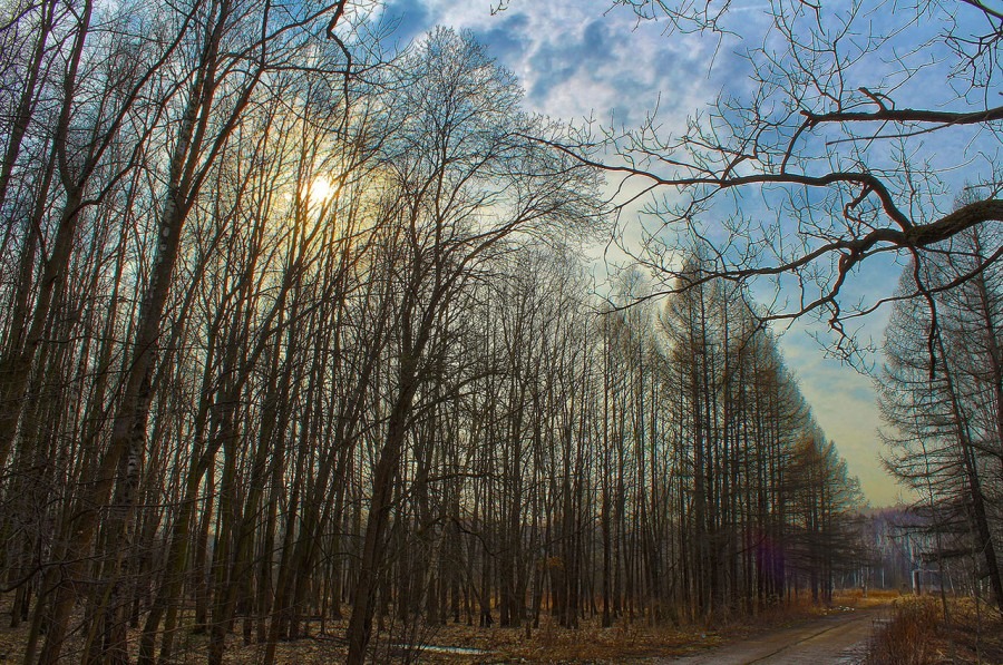march_HDR1